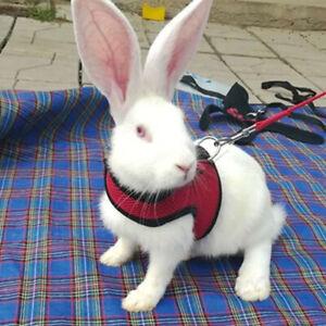 Small-Animal-Hamster-Pet-Accessories-Rabbit-Leash-Mesh-Vest-Leashes-Chest-Strap