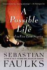 A Possible Life: A Novel in Five Parts by Sebastian Faulks (Paperback / softback, 2013)