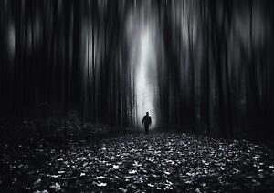 Creepy-Dark-Forest-Poster-Size-A4-A3-Travel-Fantasy-Nature-Poster-Gift-14102