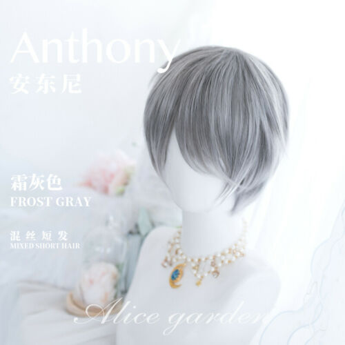 Harajuku Lolita Gray Mixed White Wig Cosplay Men/'s Short Hair Daily Hairpieces
