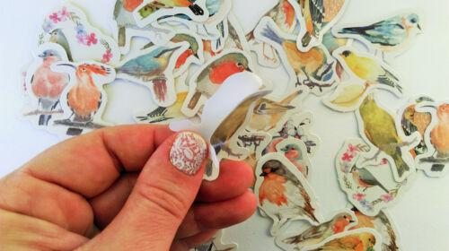 HERBST Sticker Aufkleber Wald Tiere Pflanzen Patches Halloween Kinder basteln