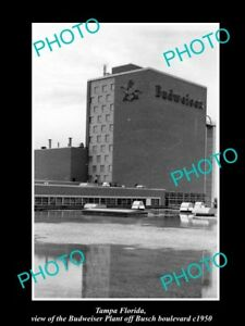 OLD-LARGE-HISTORIC-PHOTO-OF-TAMPA-FLORIDA-THE-BUDWEISER-BEER-PLANT-c1950