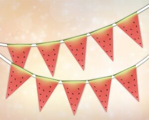 Collection-ete-Eau-Melon-Bunting-Banniere-15-drapeaux-par-Parti-Decor
