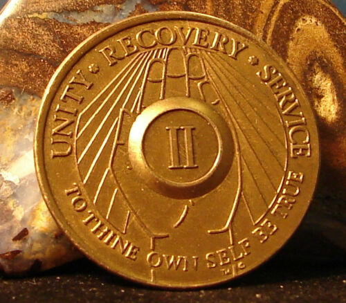 2 Year Praying Hands AA Medallion bronze Alcoholics Anonymous Token Chip Coin