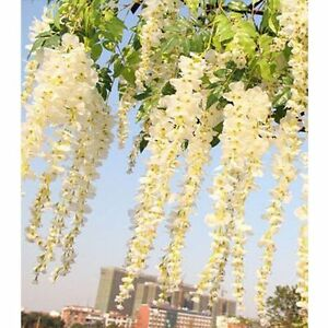 12pcs 34ft artificial wisteria vine ratta silk hanging flower for image is loading 12pcs 3 4ft artificial wisteria vine ratta silk mightylinksfo