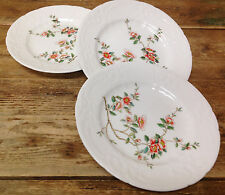 Coalport England Samarkand Asian Apricot Floral Rim Branch 3 Salad Plates White