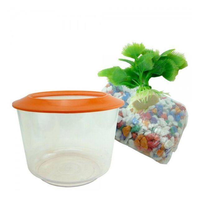 Goldfish Starter Kit Set Aquarium Fish Tank Bowl Gravel & Plant by World of Pets