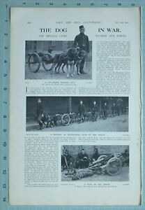 1914 WW1 PRINT DOG IN WAR GOG-DRAWN MACHINE GUN BATTERY BELGIAN DETACHMENT