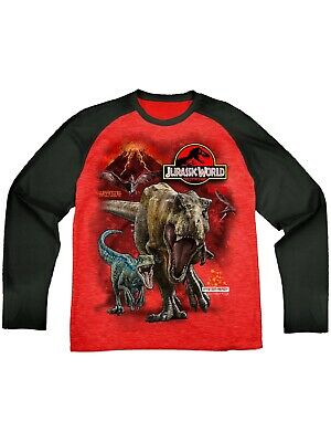 18M New Gorgeous Boys Dinosaur T-Shirt//Tee Size 6