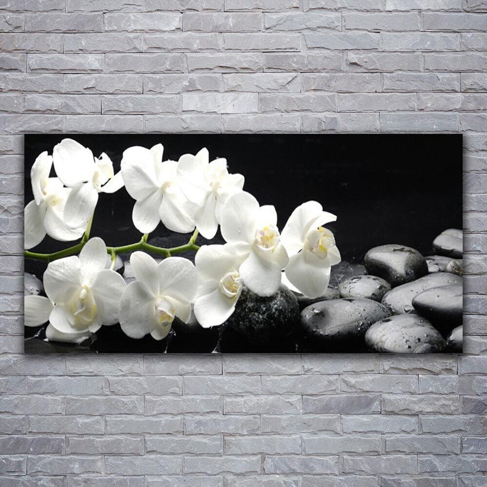 Wandbilder Glasbilder Druck auf Glas 120x60 Blaumen Steine Pflanzen