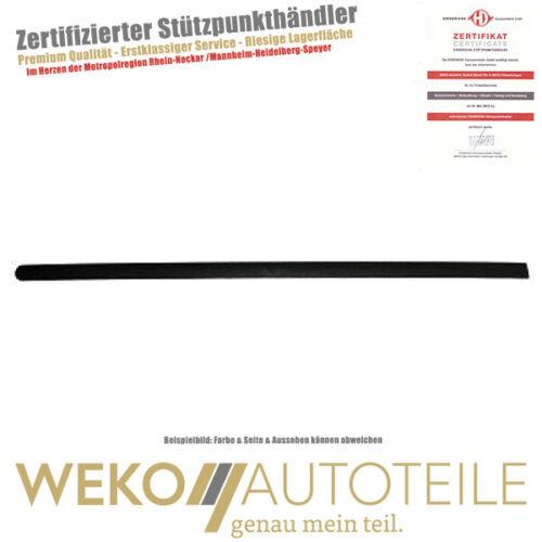 LEISTE HINTEN links für Polo 2203327 Diederichs