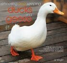 Choosing and Keeping Ducks and Geese: A Beginners Guide to Identification, Care, and Husbandry of Over 35 Species by Liz Wright (Paperback / softback, 2008)