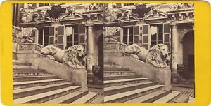 Genova-Italia-Foto-A-Noack-Stereo-Vintage-Albumina-Ca