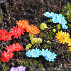 Mini Garden Ornament 10Pcs Miniature Moss Flower Craft Fairy Dollhouse Decor