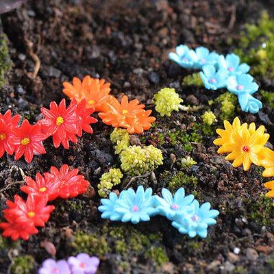 10Pcs Miniature Moss Flower Garden Ornament Craft Fairy Bonsai Dollhouse Decor