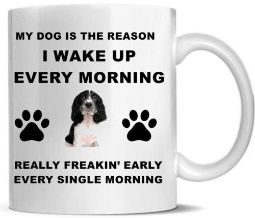 Springer Spaniel Tea//Coffee Pets Gifts Printed Mug Mug