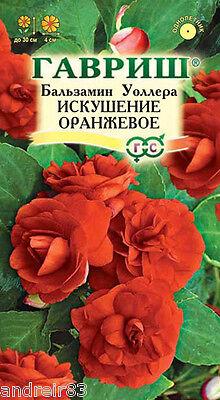 Balsamine Seeds Waller Temptation light pink 5 seeds бальзамин Gardener/'s dream