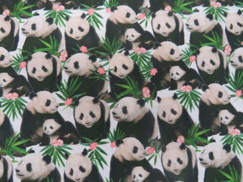 100/% Cotton Digital Fabric Wild Pandas Cute Panda Bears 150 Cms Wide