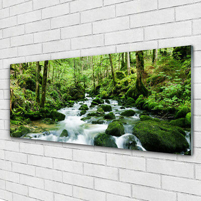 Acrylglasbilder Wandbilder aus Plexiglas® 125x50 Baum Landschaft