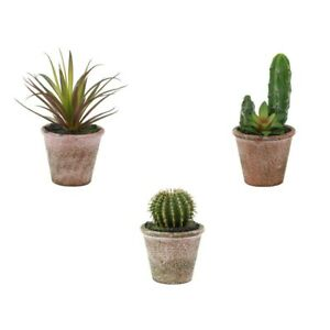 Artificial Succulents Set Of 3 Small Plants In Pots Agave Cacti And Succulents Ebay
