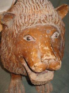 Lion Ghana Ewnc1kte-07220229-206990515