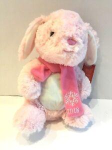 Details about Petsmart HOPE Holiday Plush Stuffed Pink White Bunny Rabbit  Soft Fuzzy 14