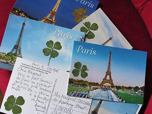 Recevez-2-veritables-TREFLES-a-4-FEUILLES-sur-une-Carte-postale-de-PARIS