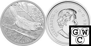 2014-5oz-Proof-50-039-Swimming-Beaver-039-9999-Fine-Silver-Coin-NT-13336