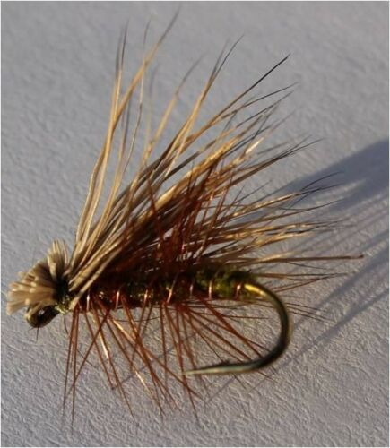 Elk Hare Caddis Olive #16; 1 Dozen Trout Fishing Files