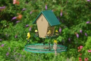 Songbird-Essentials-16-034-SeedHoop-SEED-HOOP-SEED-CATCHER-PLATFORM-dm