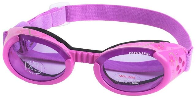 Doggles ILS Small Lilac Flower Frame With Purple Lens Dog Goggles  cb2eb26315