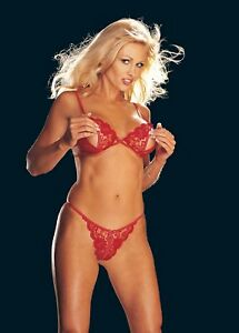 Sexy-Red-Slit-Cup-Lace-Bra-and-Open-Crotch-G-string-One-Size-HOT-Shirley-96837
