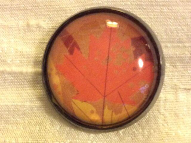 "Charley Harper Fall Leaf Leaves 1"" Glass Metal Sew Button MC Modern Charles CH82"