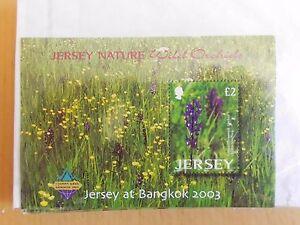 Jersey 2003 SG1118  Minisheet MNH Wild Orchids Flowers Overprint - Jersey, United Kingdom - Jersey 2003 SG1118  Minisheet MNH Wild Orchids Flowers Overprint - Jersey, United Kingdom