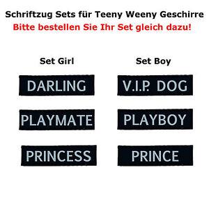 Spruchset-fuer-Teeny-Weeny-Hundegeschir-von-Karlie-Welpengeschirr