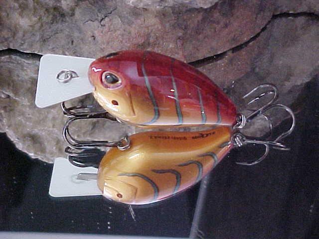 2 Storm Arashi Silent Square 5 Crankbaits Parrot D6 for sale online