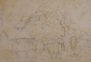 c1900 ORIGINAL ARTWORK DRAWING SKETCH - UNSIGNED - CATTLE FARM DUCKS