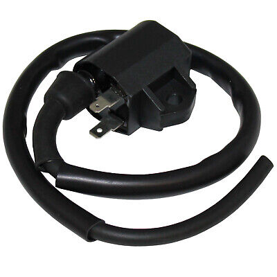 Ignition Coil For Arctic Cat 375 2X4 4X4 Auto 2002