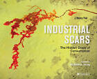 Industrial Scars: The Hidden Costs of Consumption by J. Henry Fair (Hardback, 2016)