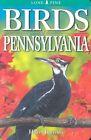 Birds of Pennsylvania by Franklin Haas, Roger Burrows (Paperback / softback, 2005)