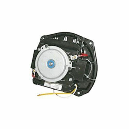 Sanitaire Vacuum Motor 220 Volt