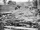 Battle of Antietam - Confederate Dead Sunken (Bloody) Lane 8x10 Civil War Photo