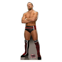 Daniel Bryan Wwe Wrestler Lifesize Cardboard Cutout Standup Standee Poster F/s