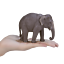 Mojo ASIAN ELEPHANT Wild zoo animal play model figure toy plastic forest jungle
