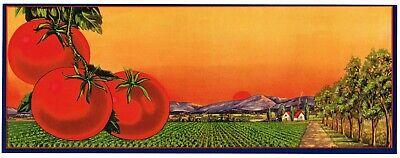 SPLENDID CRATE LABEL VINTAGE BUNGALOW ORCHARD ORIGINAL 1930 CALIFORNIA LANDSCAPE