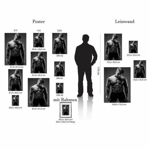 Tattoo Schwarz Weiss Körper Muskeln Postereck 0499 Poster Leinwand Sixpack