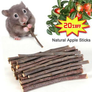 50g-Apple-Wood-Chew-Sticks-Twigs-for-Small-Pets-Rabbits-Hamster-Guinea-Pig-New