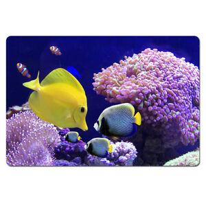 Blue Tropical Fish Design Door Mat Non Slip Kitchen