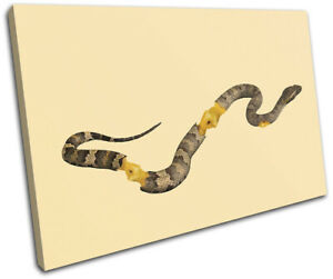 Apple-Core-Snake-Concept-Food-Kitchen-SINGLE-CANVAS-WALL-ART-Picture-Print