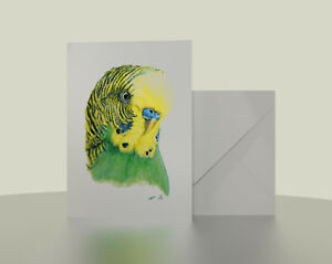 Green-Budgie-7x5-Greetings-Card-Budgerigar-from-watercolour-pencil-drawing